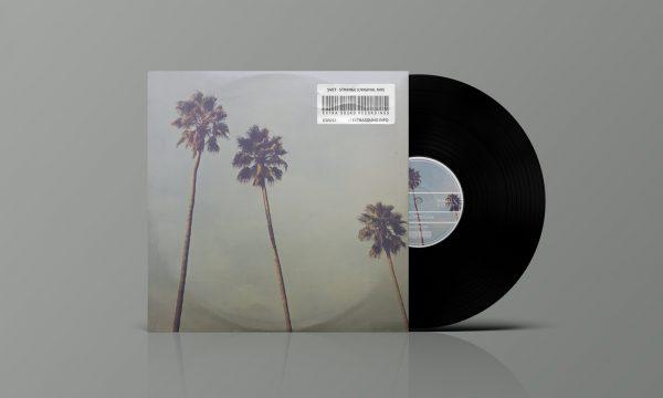 Vinyl-46